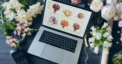 Bildval för en användarvänlig hemsida företagsforumet