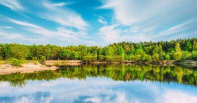 Resurser i naturen runt omkring oss företagsforumet